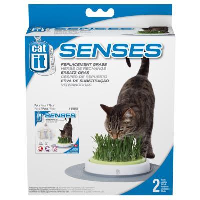Cat It - Herbe de Rechange pour Kit de Jardin Senses - x2