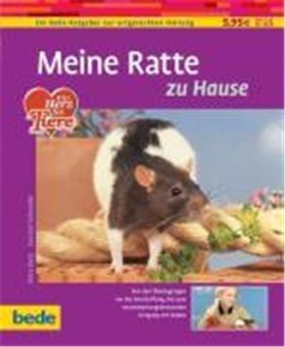 Meine Ratte zu Hause