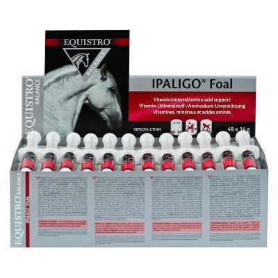 Equistro ipaligo foal - 48 seringues