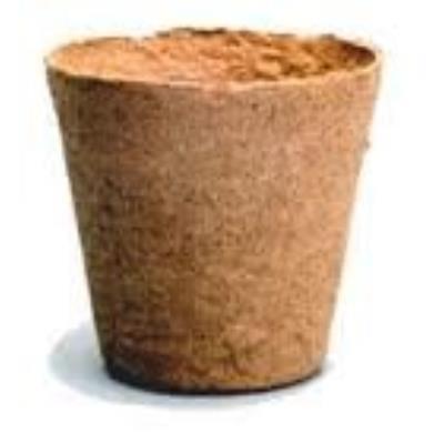 Jiffy Lot De 100 Cache-Pot En Fibre De Coco 8 Cm