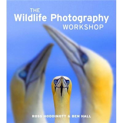 Wildlife Photography Workshop, The