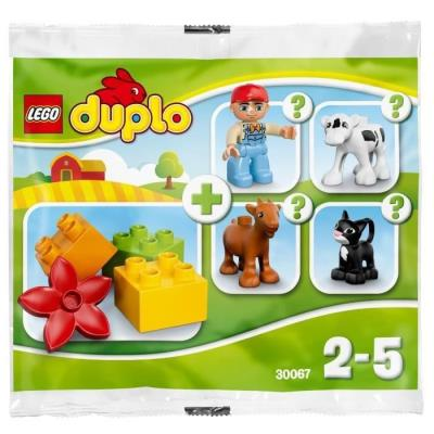 LEGO DUPLO 30067 Farm V29