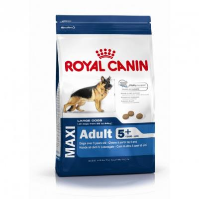 Croquettes royal canin maxi adulte mature 5+ sac 15 kg