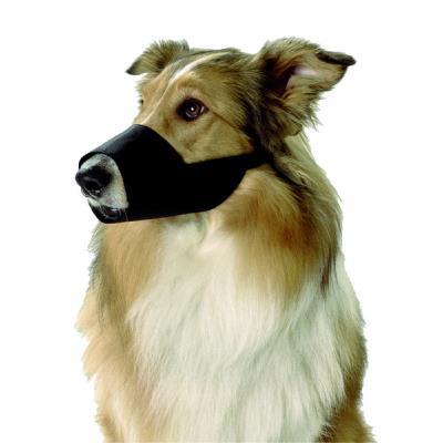 Muselière en nylon noir taille m - border colie beagle cocker