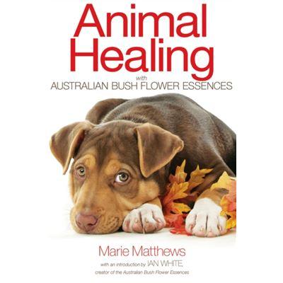 Animal Healing With Australian Bush Flower Essences: (Paperback)