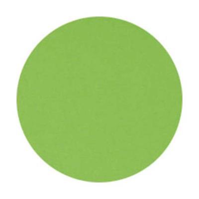 Lot de 5 Ramettes de 500 feuilles papier couleur TROPHEE 80 grammes format A4 vert
