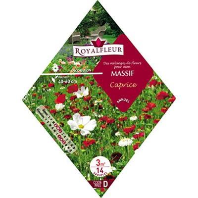 Royalfleur Pfrk08697 Graines De Mélange De Fleurs Mon Massif Caprice 3 M²