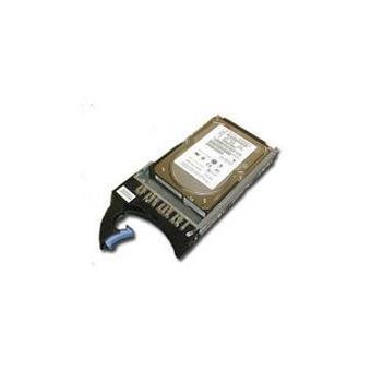 IBM - Disque dur - 750 Go - échangeable à chaud - SATA 3Gb/s - 7200 tours/min - pour System Storage DS4800 Model 80, DS4800 Model 84
