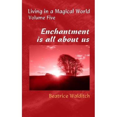 Enchantment is All About Us (Living in a Magical World) - [Livre en VO]
