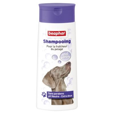 Shampooing bulles anti-odeurs : pour la fraîcheur