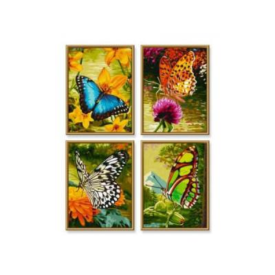 Papillons - Cadre 18/24