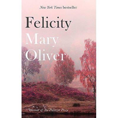 Felicity - [Version Originale]