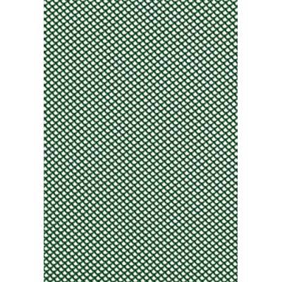 Tenax 1A100295 Jolly Filet À Maille Très Fine Plastique Vert