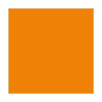 Lot de 5 Ramettes de 500 feuilles papier couleur TROPHEE 80 grammes format A4 orange vif