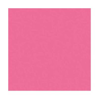 Lot de 5 Ramettes de 500 feuilles papier couleur TROPHEE 80 grammes format A4 rose fuchsia
