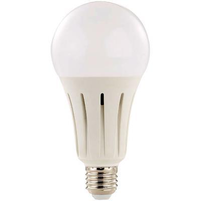 Ampoule LED E27 High Power 24 W / 2452 lm - blanc chaud