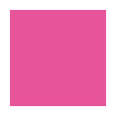 Ramette de 500 feuilles papier couleur TROPHEE 80 grammes format A3 rose fuchsia