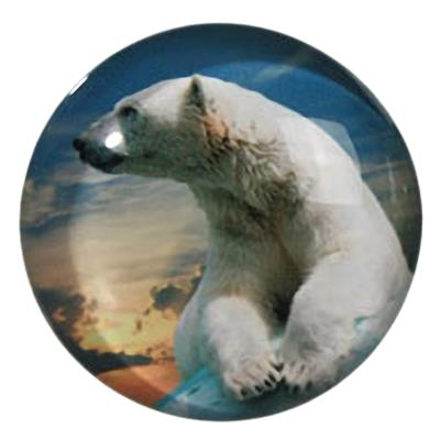 Petit magnet en verre rond Ours Blanc