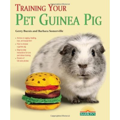Training Your Guinea Pig Gerry Bucsis