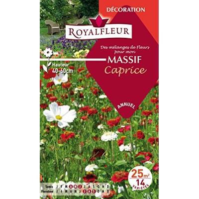 Royalfleur Pfrf08697 Graines De Mélange De Fleurs Mon Massif Caprice 25 M²