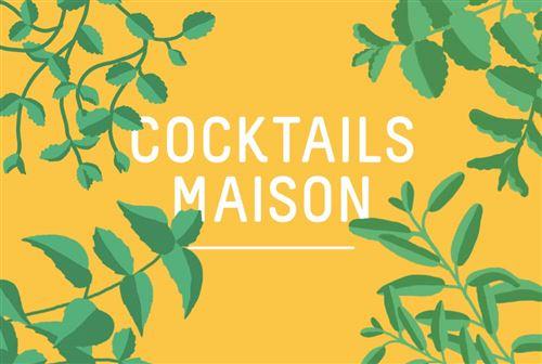 4 Capsules Prêt à Pousser Cocktails d'un soir Maison