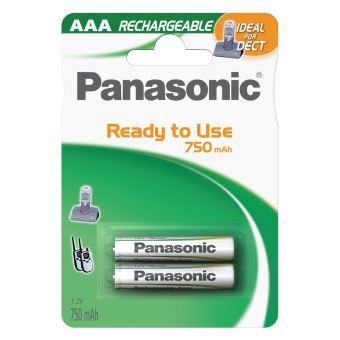 5% sur Pack de 2 piles rechargeables Panasonic Evolta AAA LR03