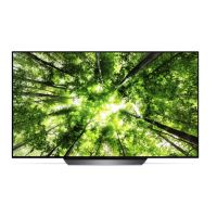 "LG OLED55B8PLA OLED 4K TV 55"""