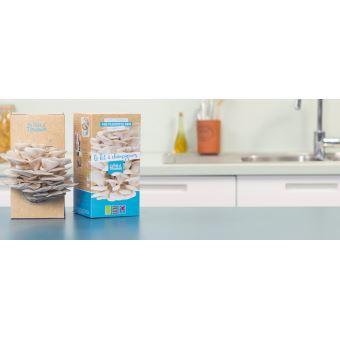 Kit à champignons Prêt à Pousser Pleurotes Gris