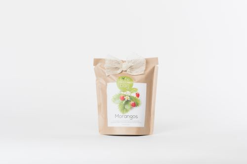 Sachet Life in a bag Grow Bag Fraise