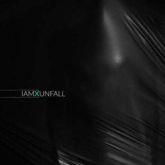 Unfall/LP LTD ED