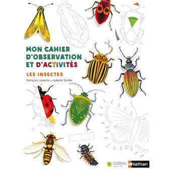 Mon cahier d 39 observation et d 39 activit s les insectes broch fran ois lasserre isabelle - Reconnaitre les insectes xylophages ...