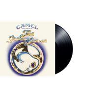 Snow goose -hq/download-