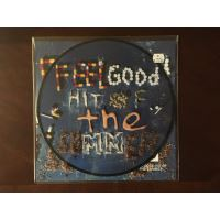 Feel good hit of the summer/ picture disc/10 inch