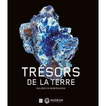 Trésors de la terre : les collections de la galerie de minéral