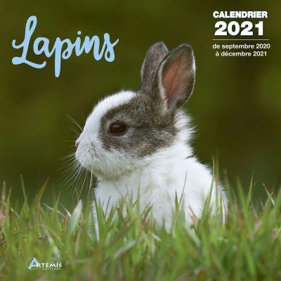 Calendrier Lapins 2021   broché   Collectif   Achat Livre | fnac