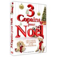 3 copains pour Noël DVD