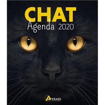 Agenda 2020 Chat