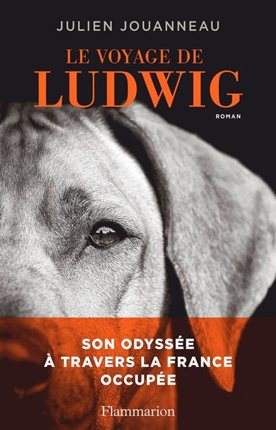 Le voyage de Ludwig - 9782081470903 - 12,99 €