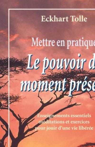 Mettre en pratique Le pouvoir du moment présent - Enseignements essentiels, méditations et exercices pour jouir d'une vie libérée - 9782896262830 - 9,99 €