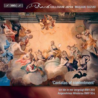 Secular Cantatas Volume 10