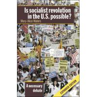 Is socialist revolution in the US possible ?