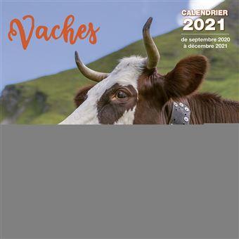 Calendrier Vaches 2021   broché   Collectif   Achat Livre | fnac