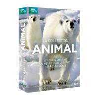 Coffret Collection Animal 3 documentaires DVD
