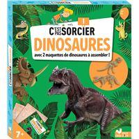 C'est pas sorcier les dinosaures - boîte avec accessoires