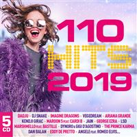 110 Hits 2019 Multipack Coffret