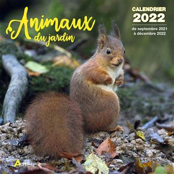 Calendrier Jardin 2022 Calendrier Animaux du jardin 2022   broché   Collectif   Achat