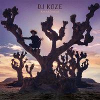 Knock Knock Double Vinyle Inclus Vinyle 45 tours et coupon MP3