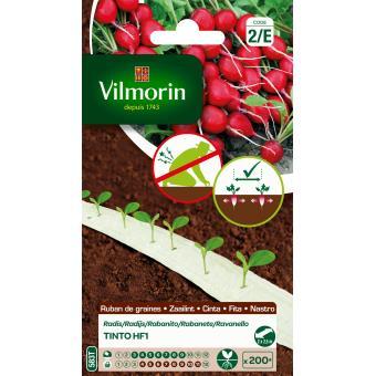 Ruban radis Tinto HF1 5m Vilmorin