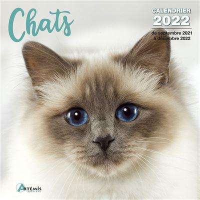Calendrier 2022 Chat Calendrier Chats 2022   broché   COLLECTIF.   Achat Livre   fnac