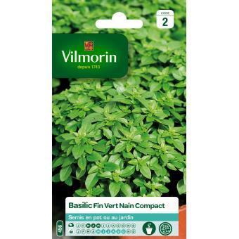 VILMORIN FND BASILIC FIN VERT COMPACT***